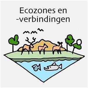 Ruimte Met Toekomst Ecozones En Verbindingen
